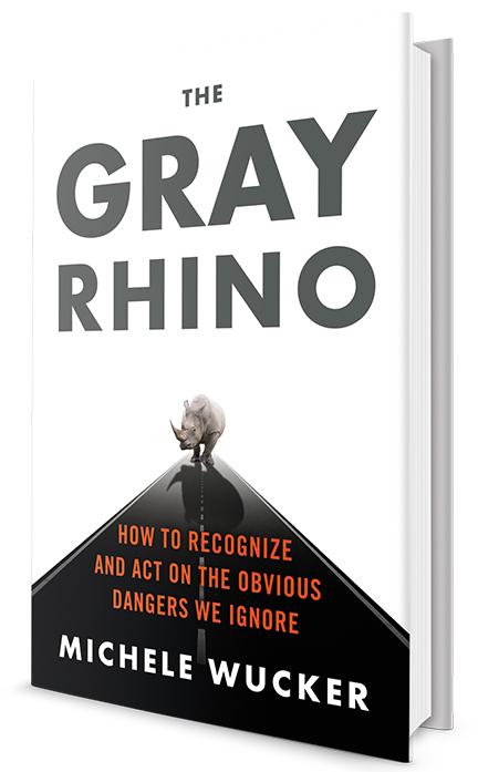 thegrayrhino-3D-cover